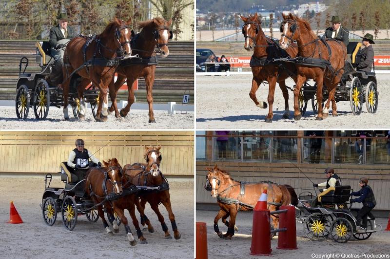 Mars 2014 - 4ème Indoor Deauville-PIC - Le concours Amateur 2 et Club - Page 3 19_pie10