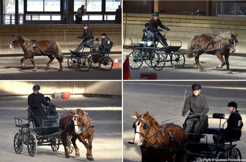 Mars 2014 - 4ème Indoor Deauville-PIC - Le concours Amateur 2 et Club - Page 3 31_guy10