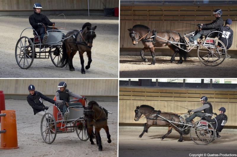 Mars 2014 - 4ème Indoor Deauville-PIC - Le concours Amateur 2 et Club - Page 3 32_jul10