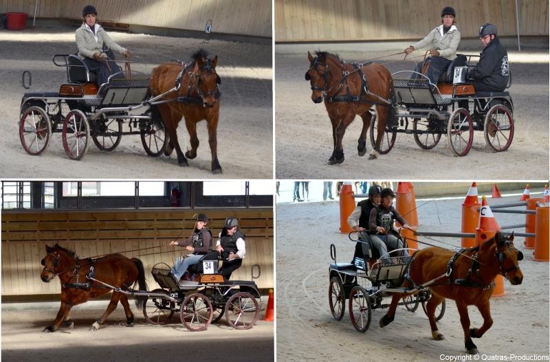 Mars 2014 - 4ème Indoor Deauville-PIC - Le concours Amateur 2 et Club - Page 3 34_suz10