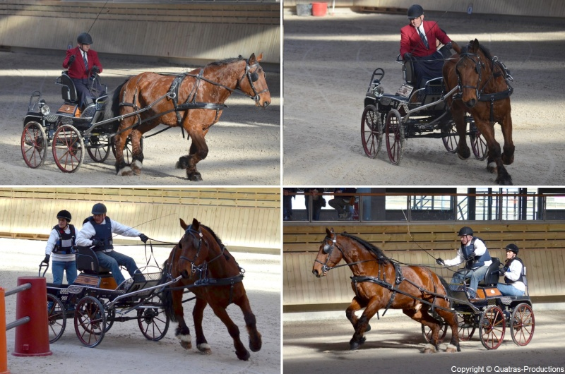 Mars 2014 - 4ème Indoor Deauville-PIC - Le concours Amateur 2 et Club - Page 3 38-jos10