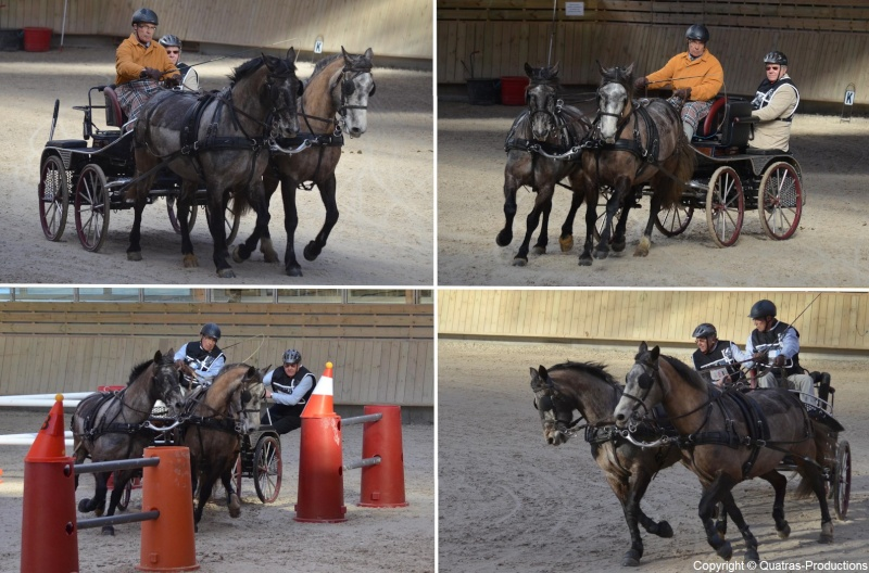 Mars 2014 - 4ème Indoor Deauville-PIC - Le concours Amateur 2 et Club - Page 3 40-yvo10