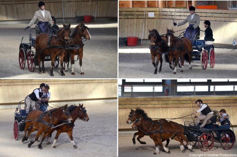 Mars 2014 - 4ème Indoor Deauville-PIC - Le concours Amateur 2 et Club - Page 3 41-tho10