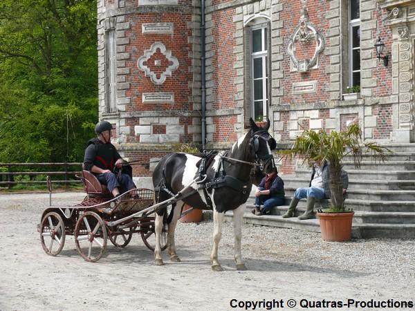 4 Mai 2014 - Journée d'attelage de l'AASM, dans le parc du chateau de Tourville les Ifs P1420611