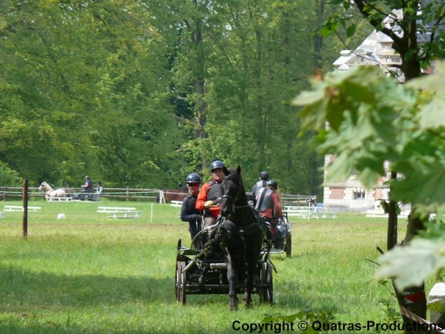 4 Mai 2014 - Journée d'attelage de l'AASM, dans le parc du chateau de Tourville les Ifs P1420711