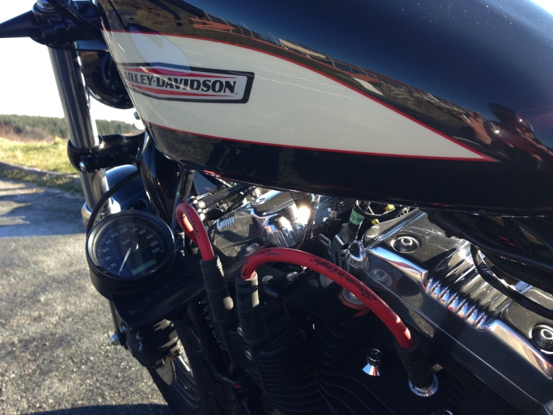 Harley Davidson Sporster 1200 Forty Eight avec quelques modifs ... - Page 4 Img_2416