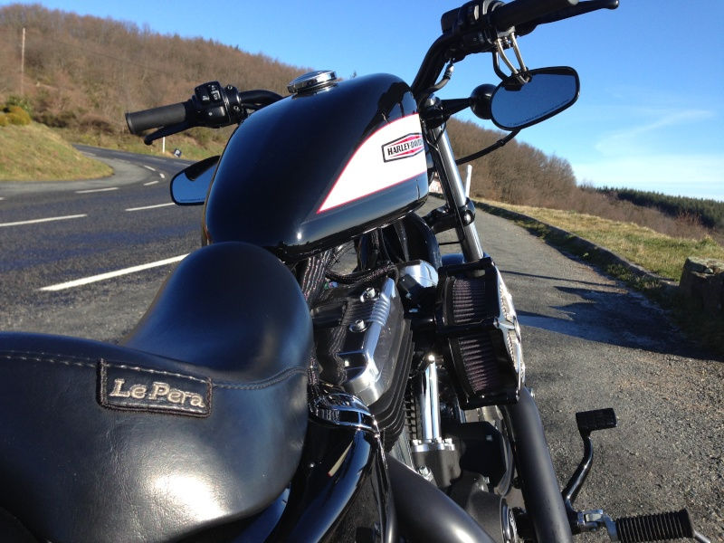 Harley Davidson Sporster 1200 Forty Eight avec quelques modifs ... - Page 4 Img_2418