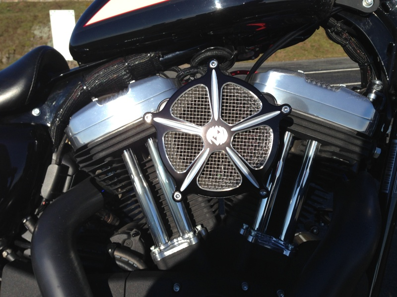 Harley Davidson Sporster 1200 Forty Eight avec quelques modifs ... - Page 4 Img_2420