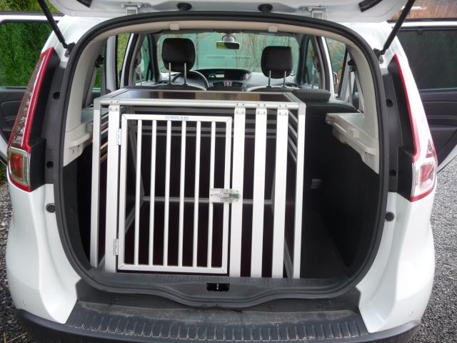 Transport en voiture des chiens et chats - Page 5 P1130521