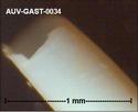 Microfossiles d'Auvers sur Oise Auv-ga53
