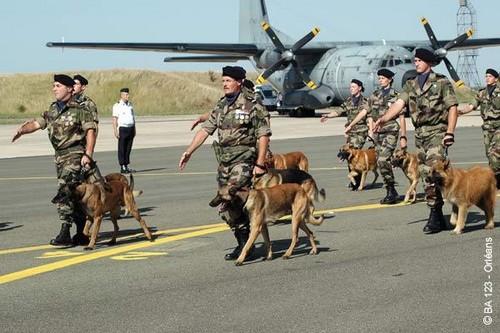 Les Maîtres Chiens de l'Armée de l'Air Les_cr10
