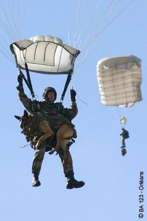 Les Maîtres Chiens de l'Armée de l'Air Les_cr11