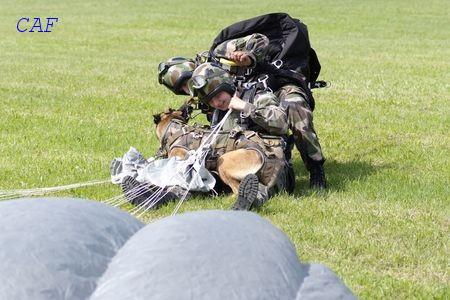 Les Maîtres Chiens de l'Armée de l'Air Pupuce11