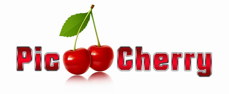 Logoerstellung für Pic Hosting Pic-ch10