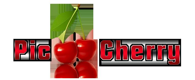 Logoerstellung für Pic Hosting Pic-ch11