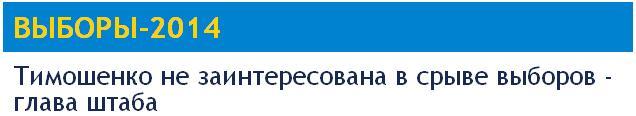 Прямая демократия – главный аргумент против федерализации Украины. Vibori11
