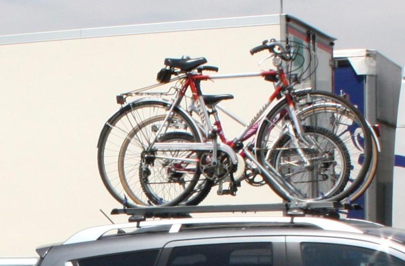 porta - Porta Bici: lo metto o no?! Immagi10