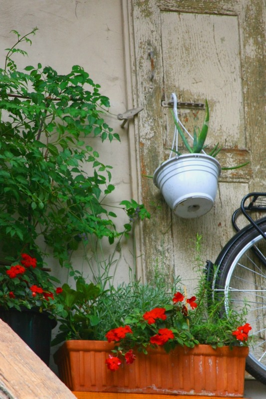 Dans les rues d'Annecy Week_e21
