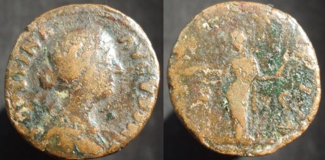 Maximiani Monetae Fausti10