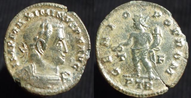 Maximiani Monetae Maximi19