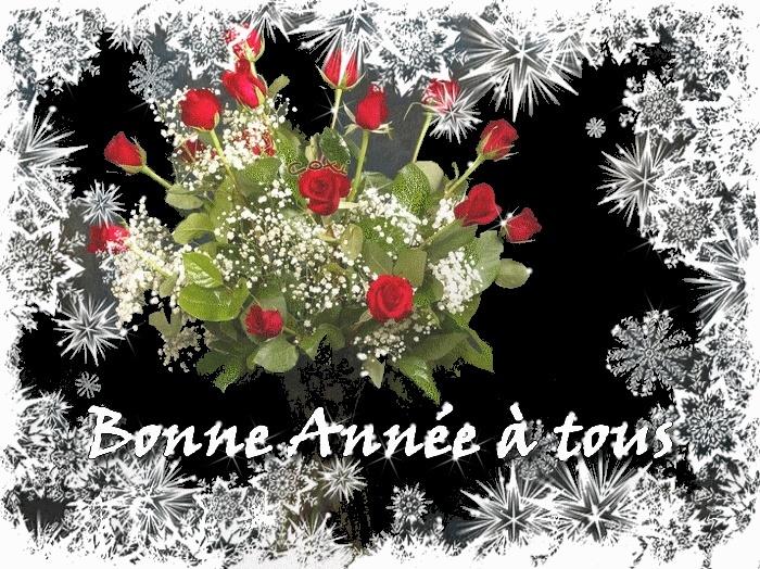 Bonne année 2014 Bonne_11