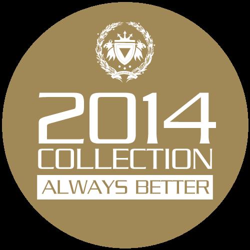 Nouveaux sacs pour cerfs-volants 4 lignes  -  Air-One Shop 201411