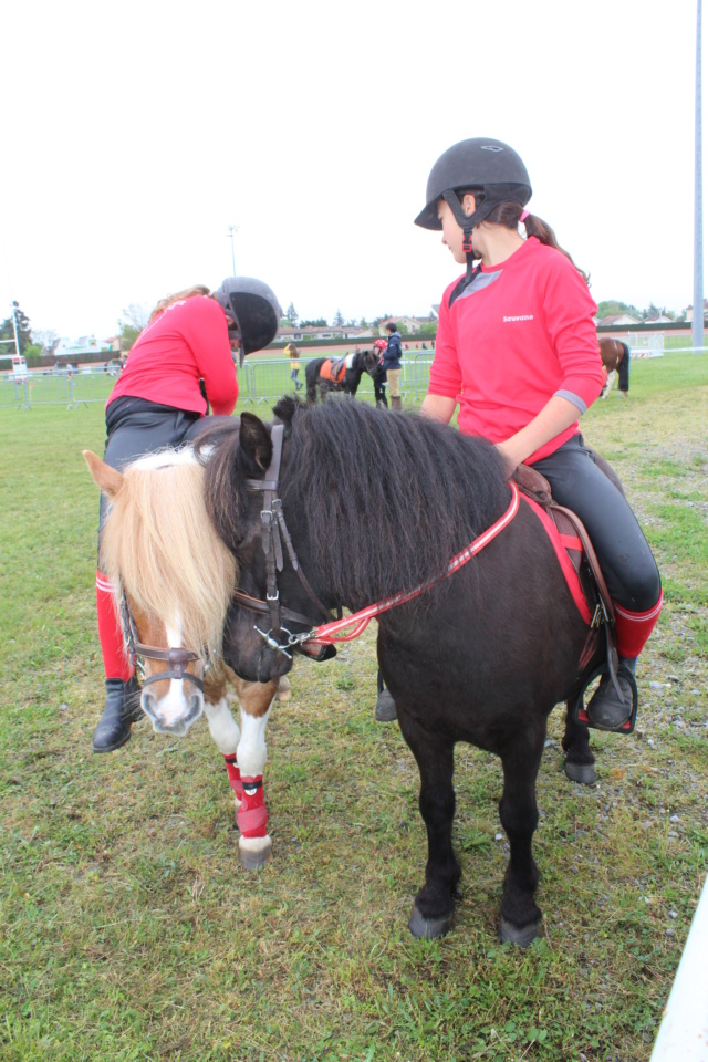 """propose """"pension"""" ponette shetland pony games  autour de Salaise  02510"""