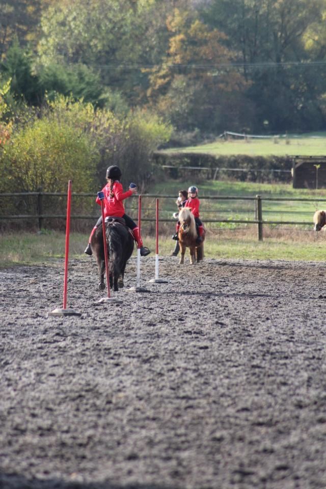 """propose """"pension"""" ponette shetland pony games  autour de Salaise  Pony_110"""
