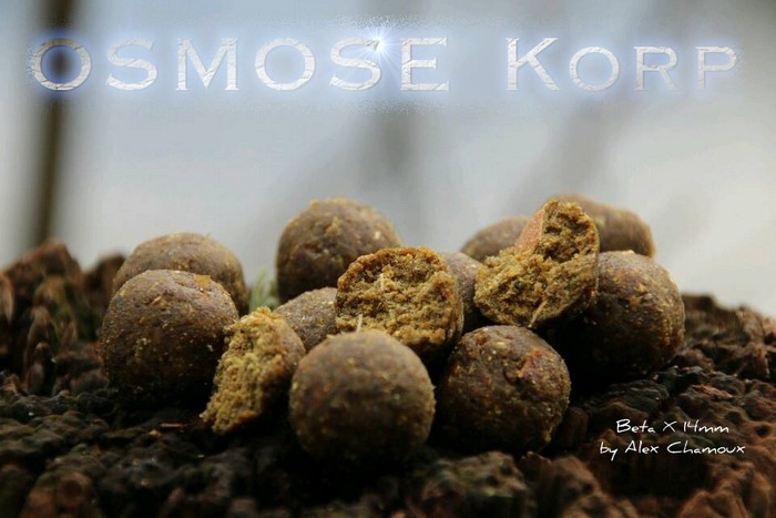 Osmose Korp Quality Nothing Else