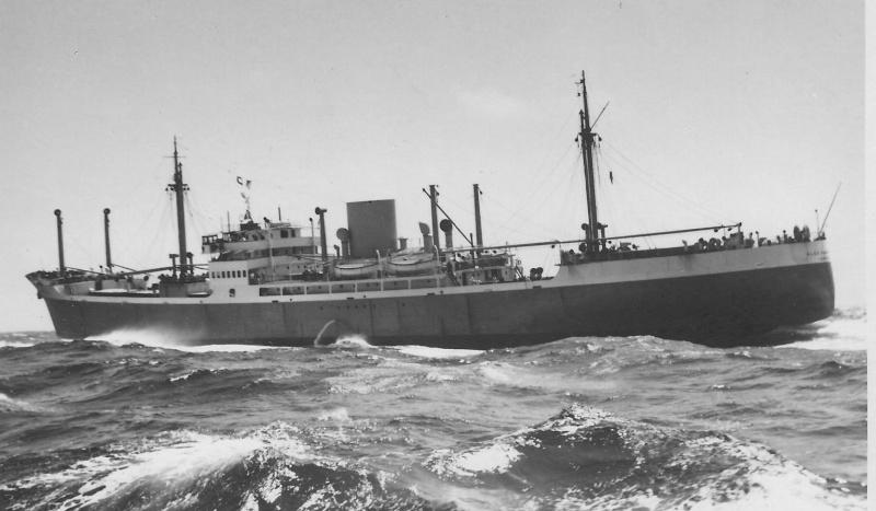 Belgian Shipping - CMB: Alex Van Opstael 1937 Alex_v10