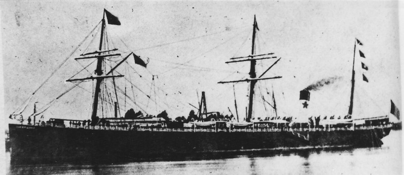 RED STAR LINE Vaderl10