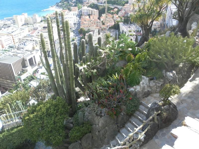 jardin exotique de Monaco Sam_1317