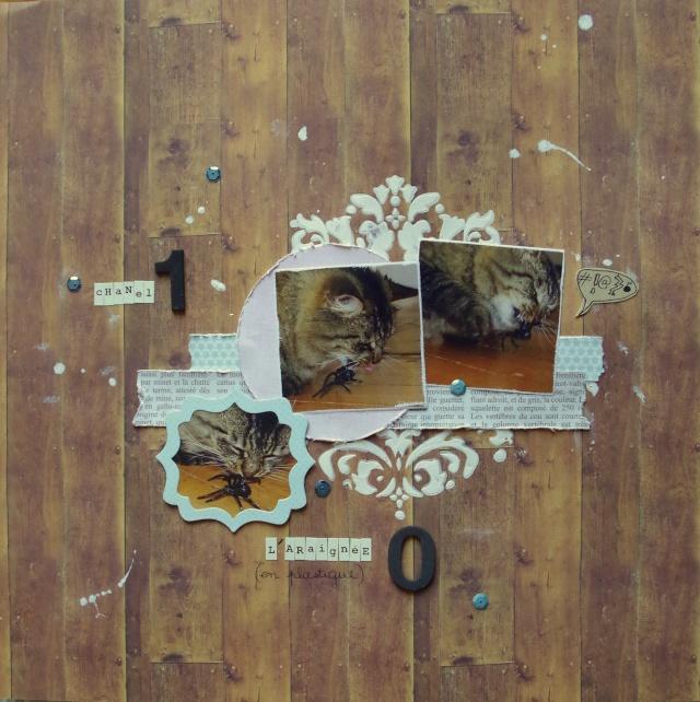 Galerie d'Anneso en 2014 (édit du 30/03) Imgp0010