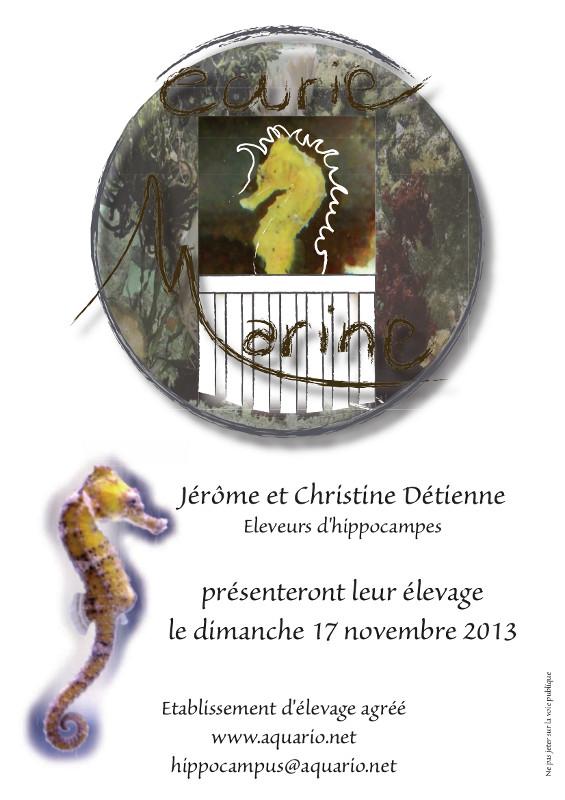 Bourse 2013 Affich12
