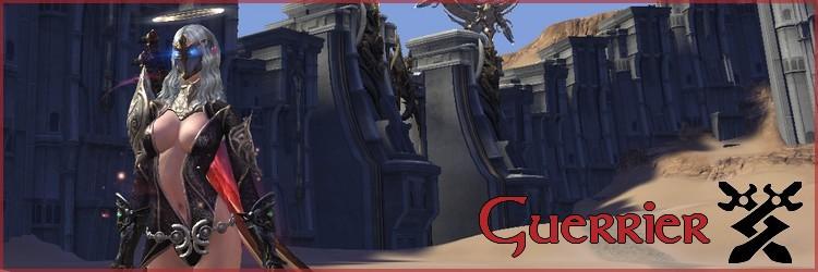 [Guide] Guerrier DPS Bann10