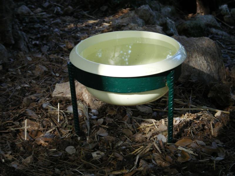 poules - L'eau des poules... Abreuv10