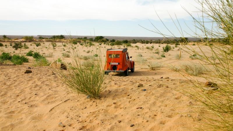2006 Mauritanie en 4x4 bimoteur 006_da10
