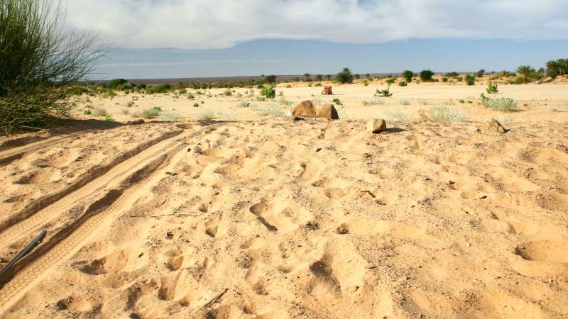 2006 Mauritanie en 4x4 bimoteur 174_da10