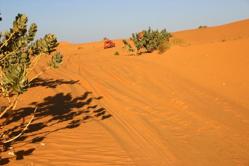 2006 Mauritanie en 4x4 bimoteur 2cv_bi12