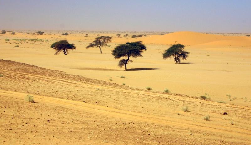 2006 Mauritanie en 4x4 bimoteur 2cv_bi29