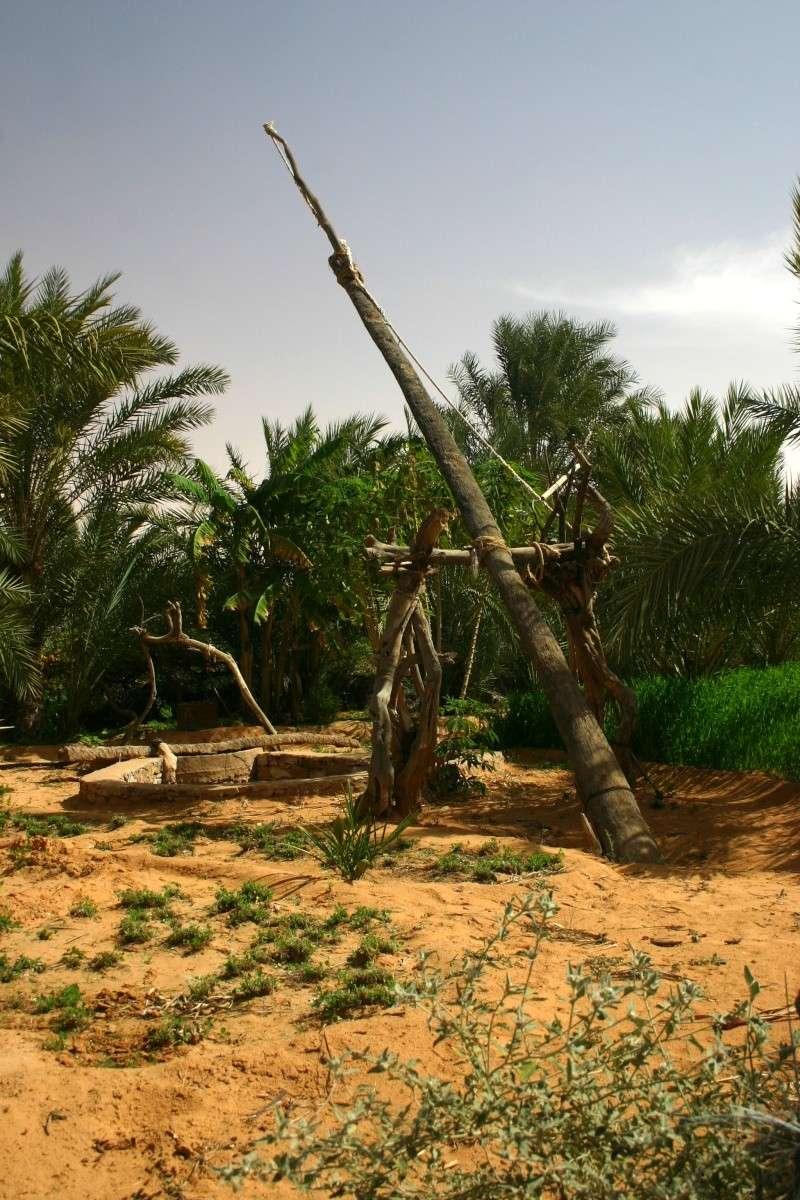 2006 Mauritanie en 4x4 bimoteur 2cv_bi47