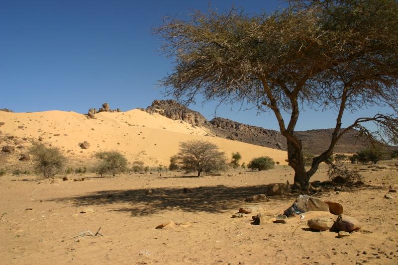 2006 Mauritanie en 4x4 bimoteur 2cv_bi62