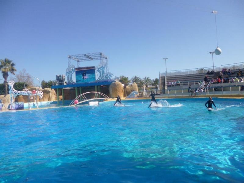 Une journée a Marineland le 14 avril 2013 avec un temps d'été 9210