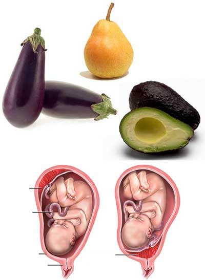 Хранене за здраве Avocad10