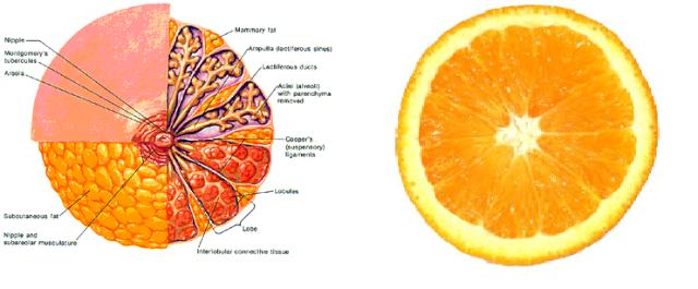 Хранене за здраве Orange10