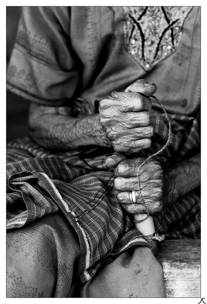 La vie ne tient qu'à un fil... _mg_3015
