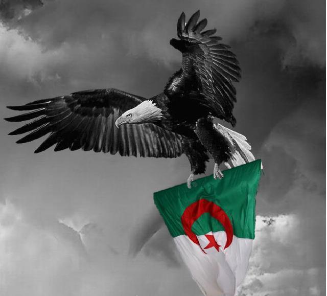 أنا الجزائري ... من أنت؟؟؟؟....جزائري وأفتخـر D1113e10