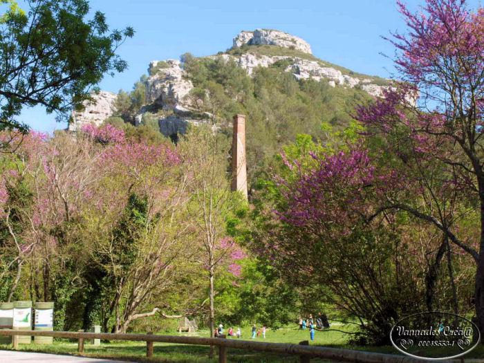 Ballade pour ce beau printemps 2014 411
