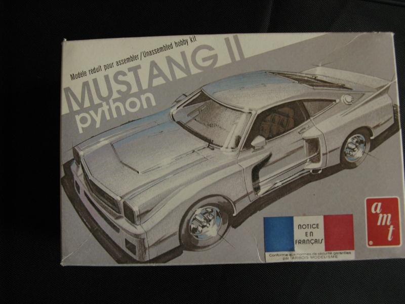 Mustang II Python Img_7810