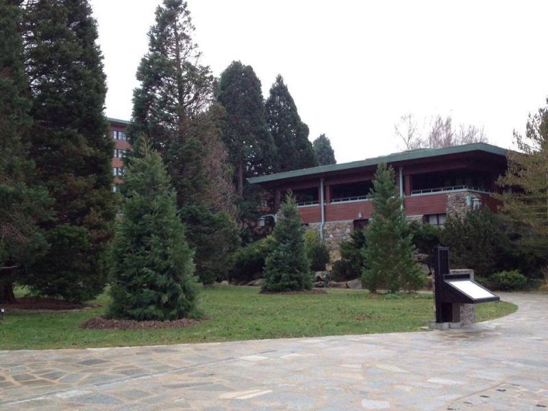Disney Sequoia Lodge - Page 4 9959_610